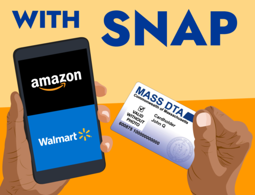 SNAP Online Purchasing Program